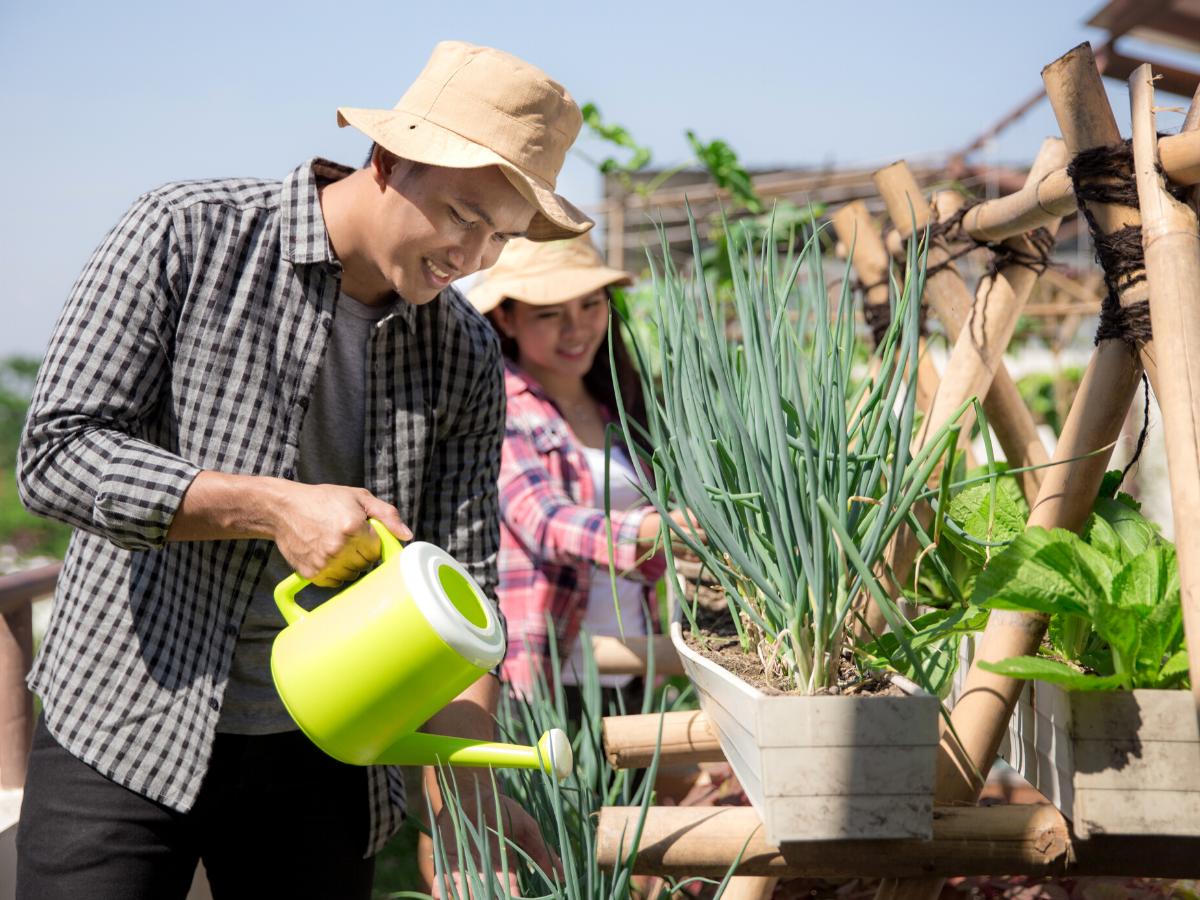 Urban Gardening ist nachhaltiges und traniges Hobby der Zukunft