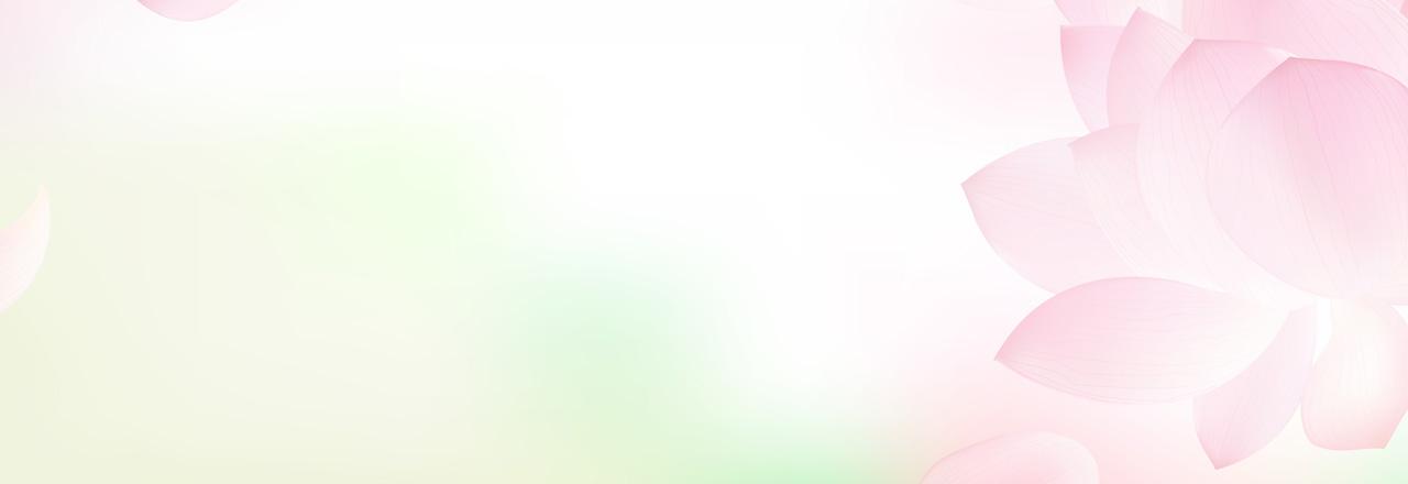rosa_blütenblätter