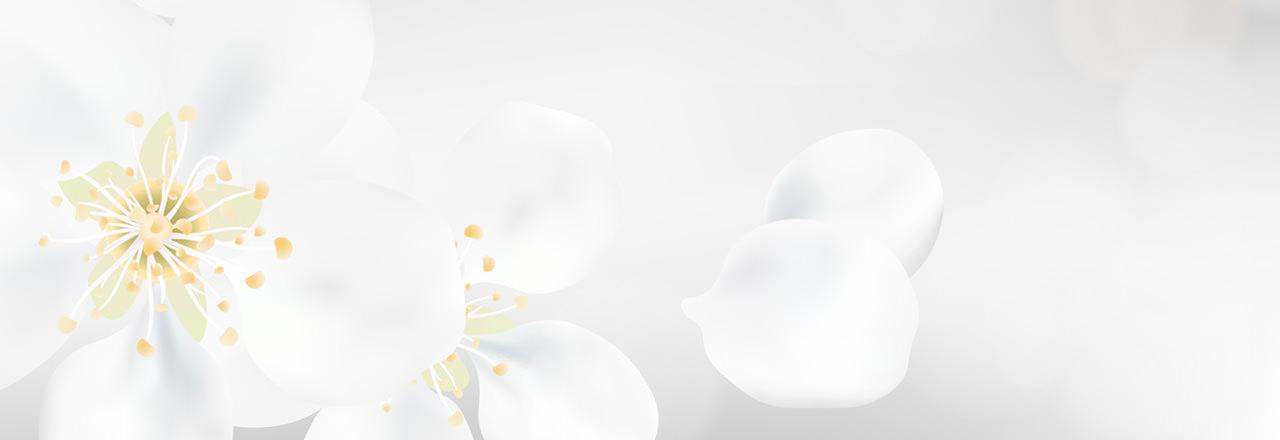 weiße Blüte Tischkarten Jugendweihe