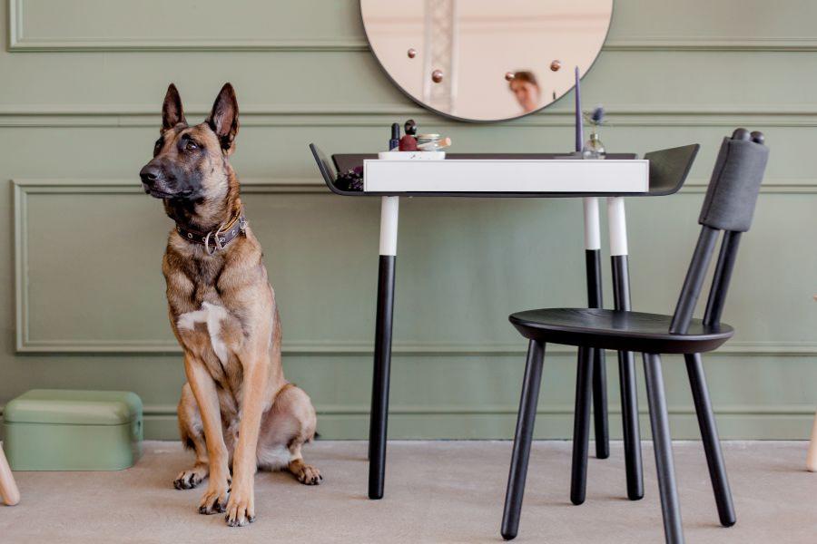 Ecko Tisch und Stuhl