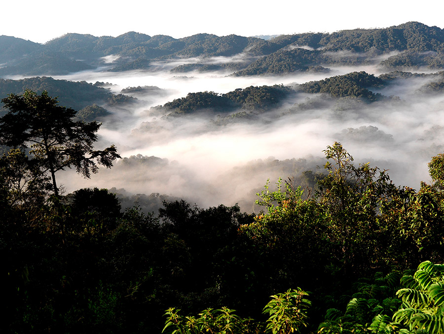Ruanda-afrika.jpg