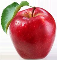 Ferienwohnung-Apfel