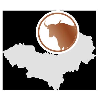 Yakwolle aus der Mongolei