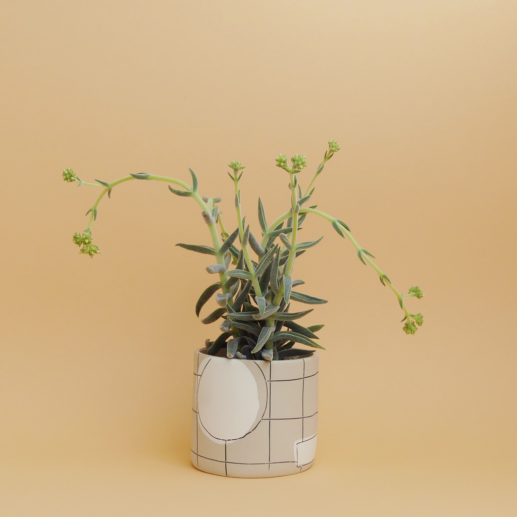 Anna Beam Keramik ceramic kaufen online - The Botanical Room cool plant shop berlin Design Kreuzberg urban jungle
