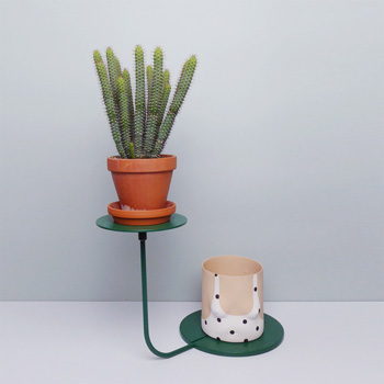 Studio Greiling Design kaufen Berlin - The Botanical Room - plant shop Berlin design ceramic urban jungle