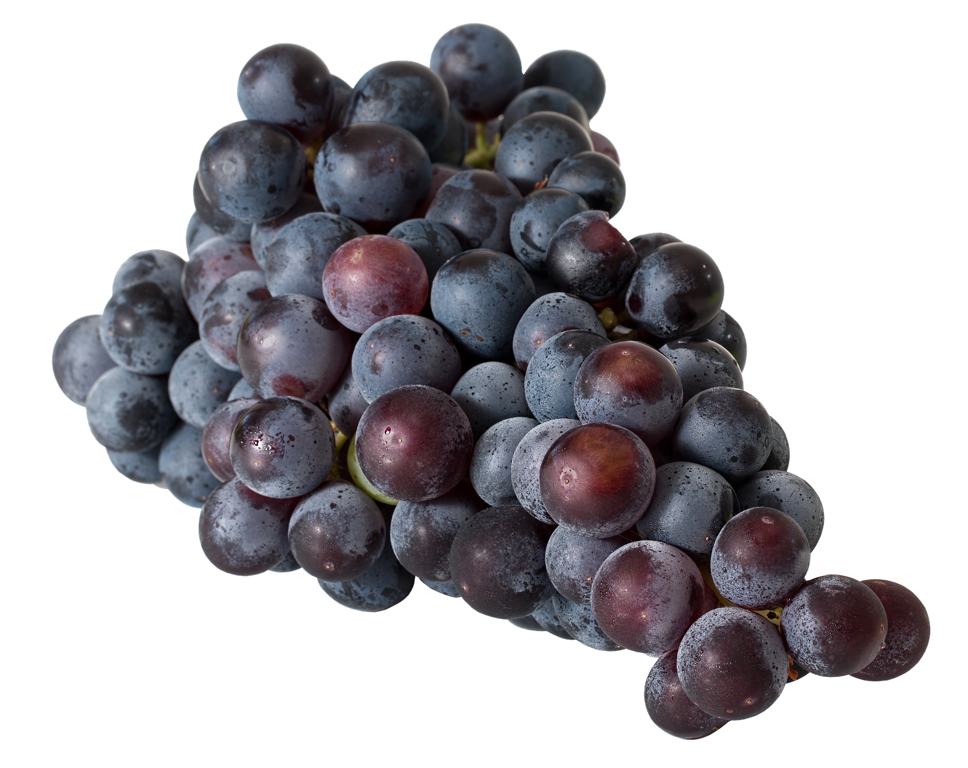 grapes-2520999_1920.png