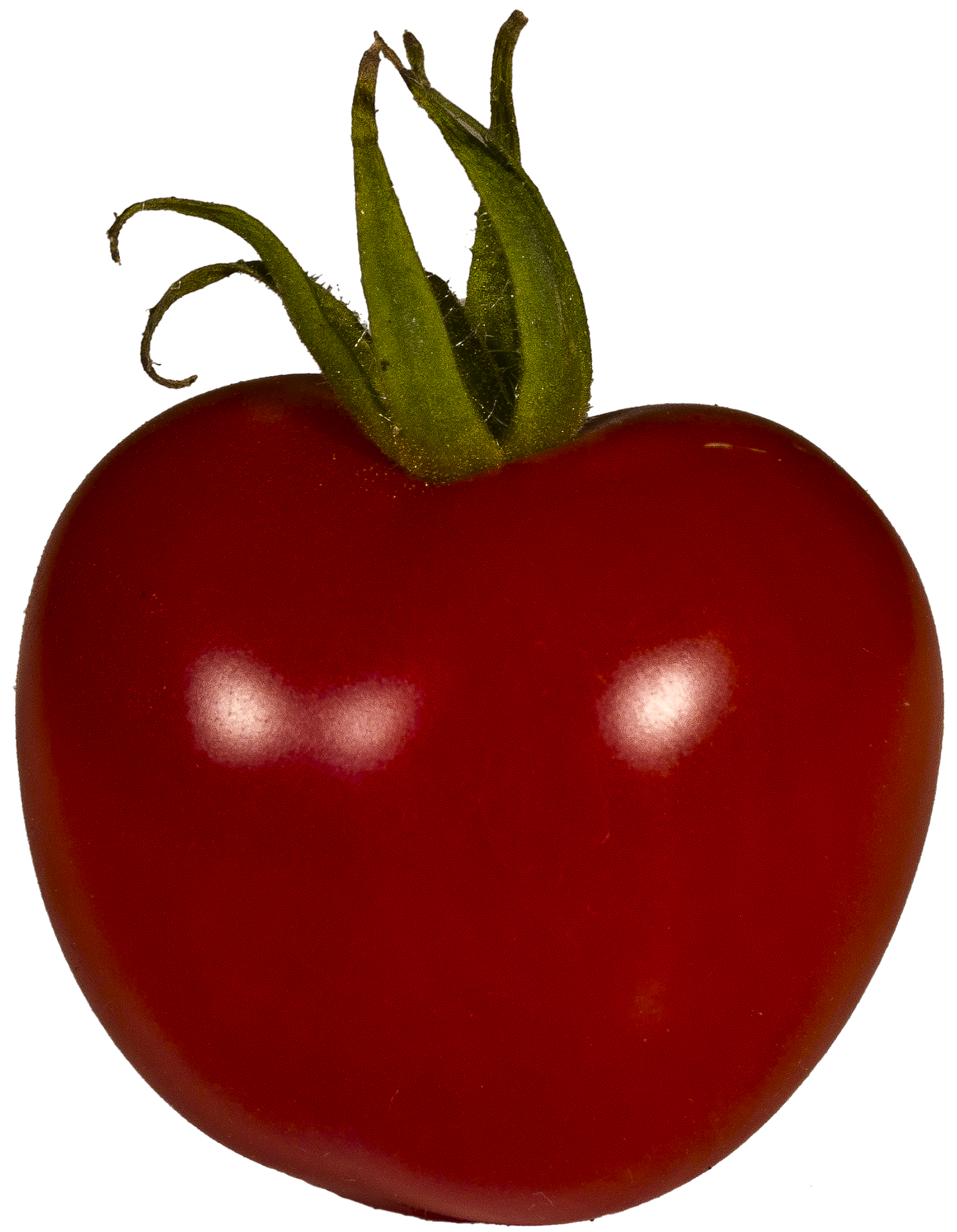 tomato-2485050_1920.png